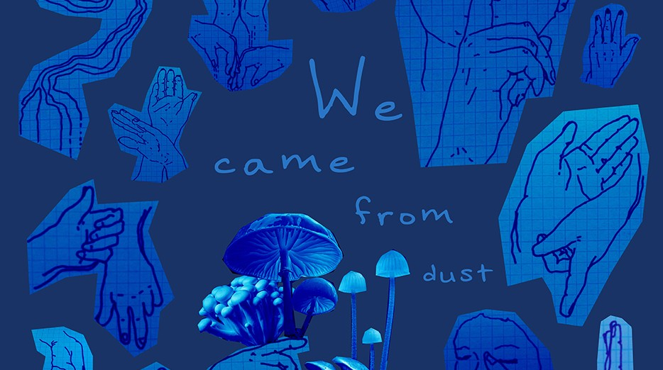 We Came From Dust
